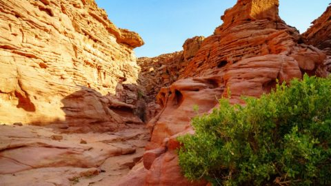 Flüge nach Sharm El-Sheikh