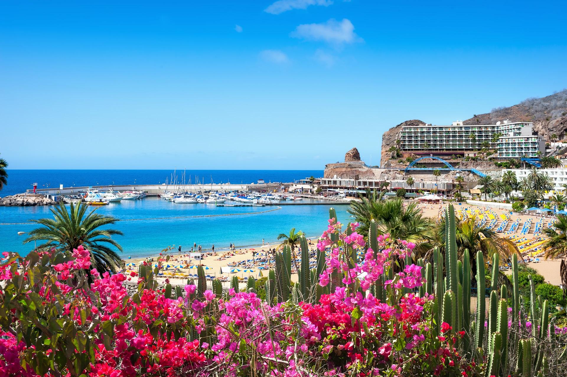 Frankfurt Gran Canaria