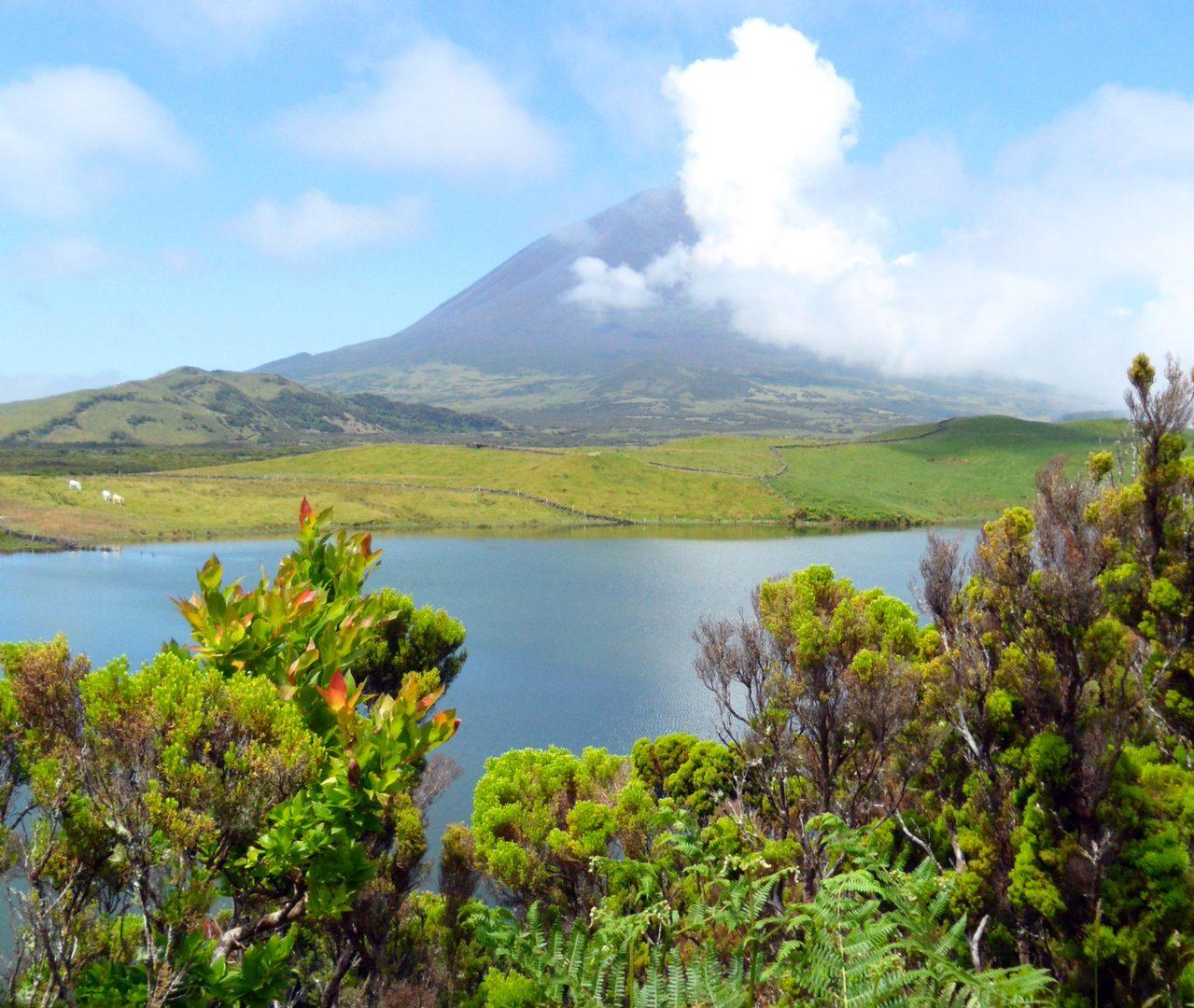Flüge nach Pico Island