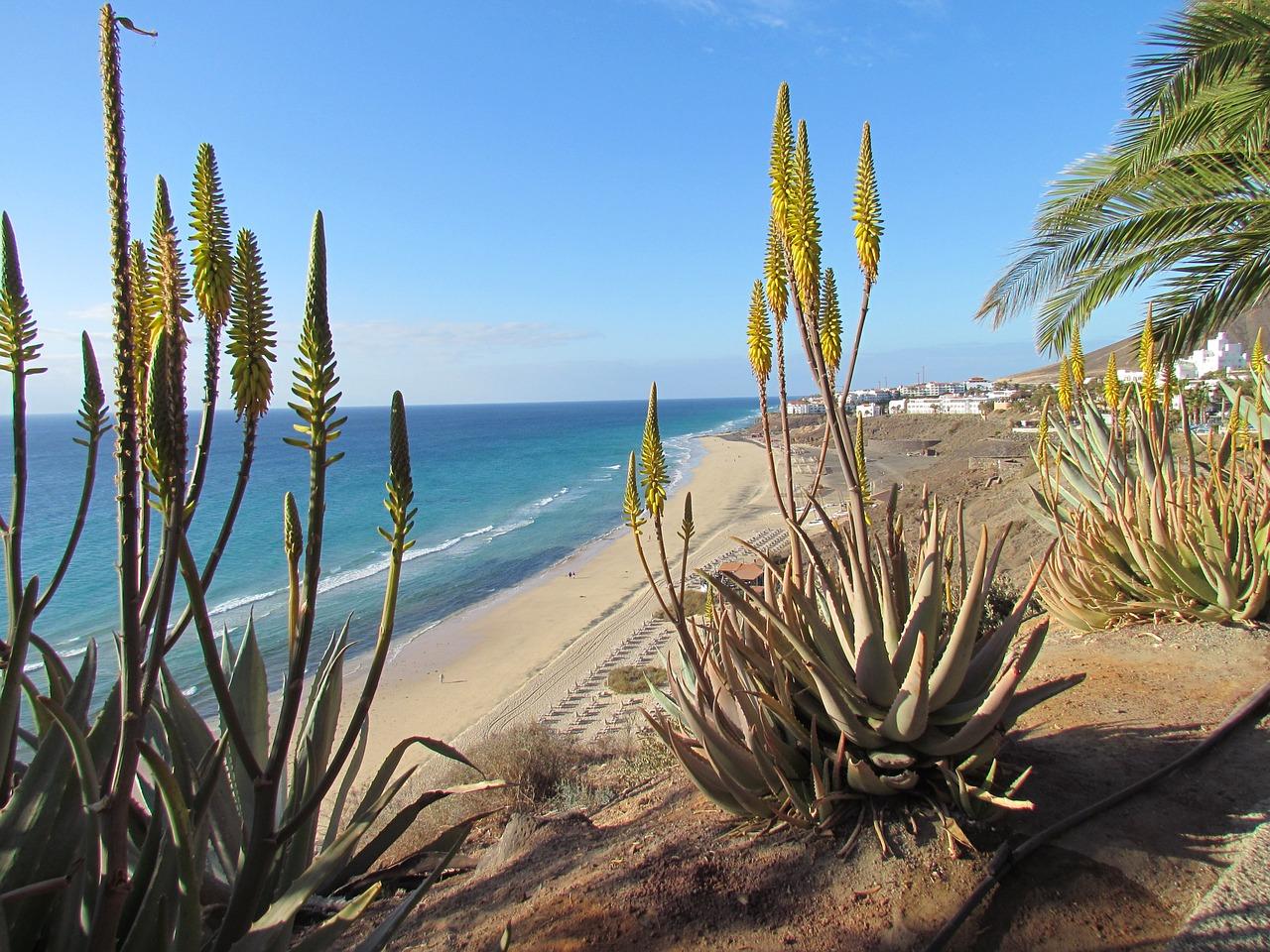Flüge nach Fuerteventura